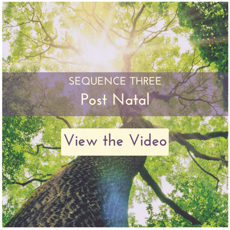 Yoga Sequence Three - Post Natal Video
